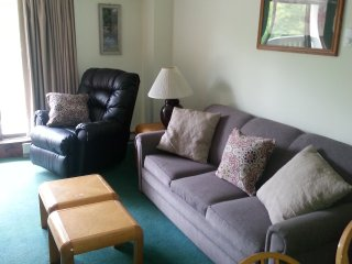 GOLF  2 Bd 1&1/2 B Condo  $109 av nt. Four Season Resort Condo Sleeps 7