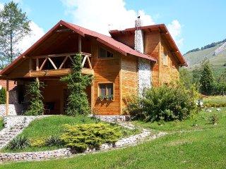 Holiday House in Transylvania,Valisoara, Romania