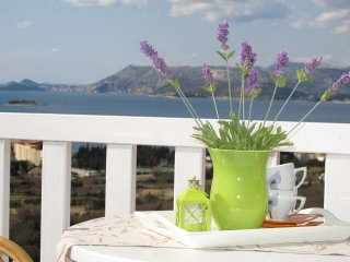 1bedroom apartment with swimming pool, Cavtat