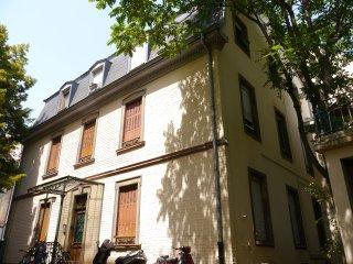 joli appartement meublé ' le lilas' wifi inclus, Straatsburg