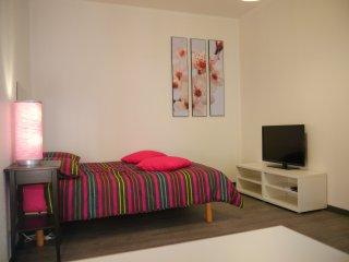 joli meublé à 5mn du centre ville STRASBOURG, Schiltigheim