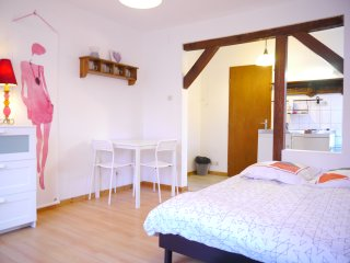 joli meuble  WIFI gratuit prox STRASBOURG  (fleur)