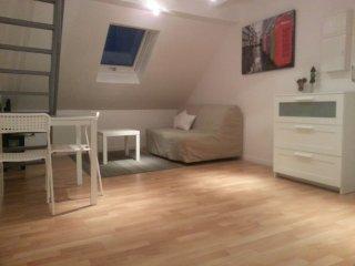 joli meublé avec mezzanine prox STRASBOURG, Strasbourg