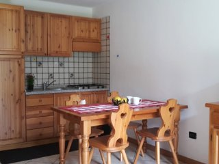Comfortable apartment in the Mont Avic Park, Champorcher