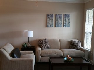 Furnished Apartment Rentals in MD Anderson, Houston