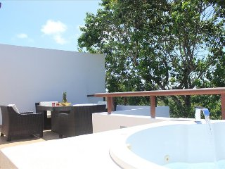 HP8 Private Rooftop, Panoramic Jungle & Ocean View, Akumal