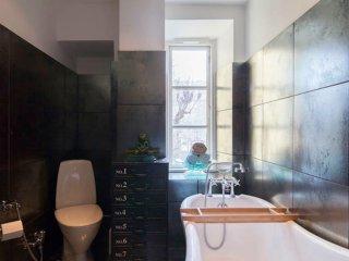 135 m2/1400 Sqft Luxury apartment in downtown Copenhagen!