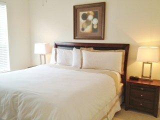 Furnished 2-Bedroom Apartment at Buffalo Speedway & W Alabama St Houston