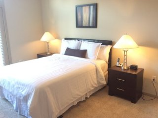 Furnished 1-Bedroom Apartment at St Joseph Pkwy & Crosby St Houston