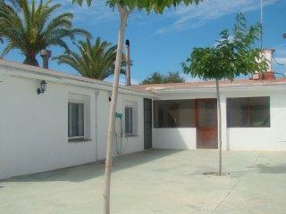 La casa de las Palmeras, El Poble Nou Del Delta