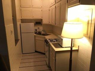 Gorgeous 1 Bedroom, 1 Bathroom Apartment in Chicago
