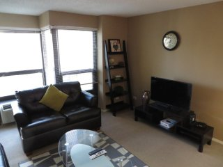 BEAUTIFUL AND CLEAN 1 BEDROOM 1 BATHROOM CONDOMINIUM, Chicago