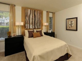 Furnished 3-Bedroom Apartment at Hickory Ridge Rd & Martin Rd Columbia