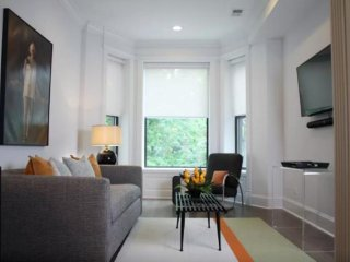 Furnished 1-Bedroom Apartment at N Orchard St & W Briar Pl Chicago