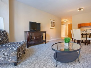 Furnished 1-Bedroom Apartment at Lake St & N Francisco Terrace Oak Park