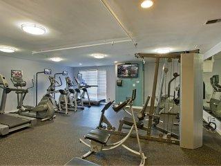 Furnished 2-Bedroom Apartment at Lake St & N Francisco Terrace Oak Park