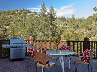 Deluxe Forest Getaway with Robin Nesting Views, Idyllwild