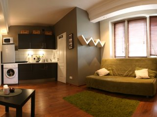 Very Central and Tastefully Decorated Studio Marszałkowska Apartment