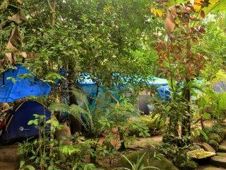 Camping da Cachoeira (tambem com hostel), Vila do Abraao