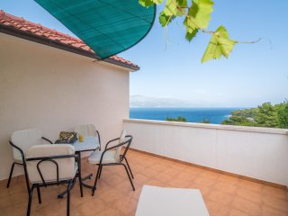 Apartments Ana & Bogdan- One Bedroom Apartment with Balcony and Sea View, Postira