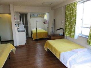 Triple room L1 Nihonbashi, Koto area in Tokyo
