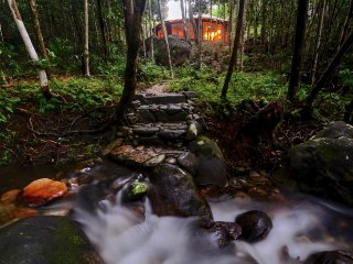 Daintree Cascades - The Roundhouse