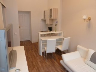 Apartment 4 (everything in close walking distance), Viena