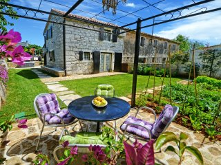 Istrian house for perfect vacation-Villa Gašparini, Visnjan