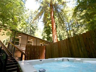 Tree House! Your Own, Personal Retreat! Game room, Hot Tub,WiFi NEW! 3 for 2!, Rio Nido