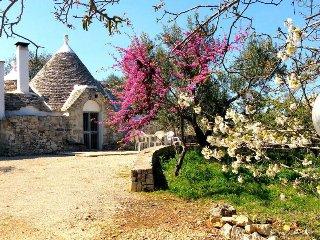 Trullo Salice Casa Vacanza relax per 4 in Puglia, Ceglie Messapica