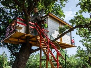 Casa sull'albero, Vasto