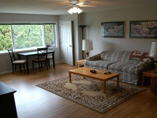 Fully Furnished 1 Bedroom level entire suite.