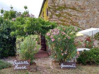 App. Campanula in casale toscano con piscina, Castellina Marittima