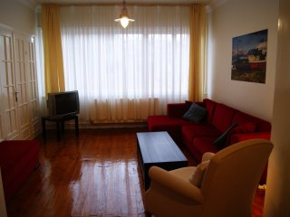 2 Flats in Central Istanbul