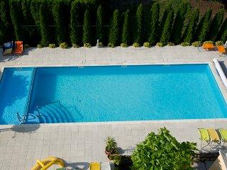 Tiny flat at Balaton with pool, Szantod