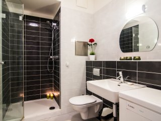 Fully Equipped Flat Just  For you, Prague