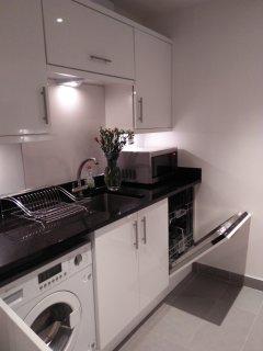 Integrated dish machine and wash machine