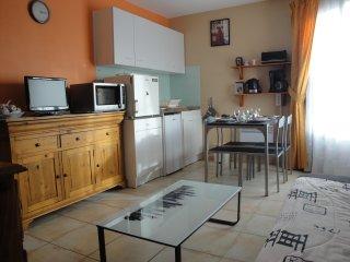 appartement en Camargue(Gard) 15 kms Méditerranée, Saint-Laurent-d'Aigouze