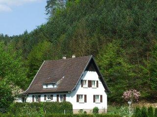 Vos vacances au coeur des Vosges du Nord, Sturzelbronn