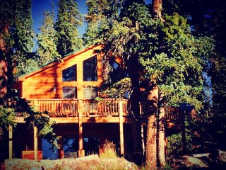Beautiful, Cozy, Family Cabin near Breckenridge, Fairplay