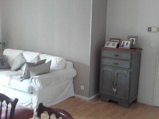 1 chambre dans appartement lumineux et agréable, Tours