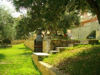 Kripis Studio Paliouri No6