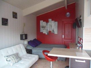 studio avec terrasse en Camargue (climatise)