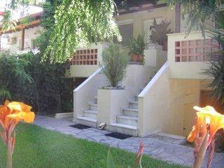 Acacia home 2, Psakoudia