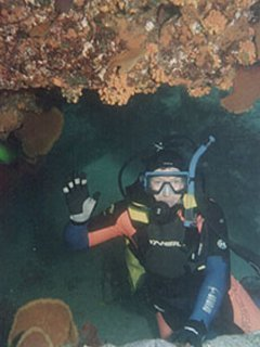 Scuba diving in pristine waters of Cabo Pulmo National Marine Park
