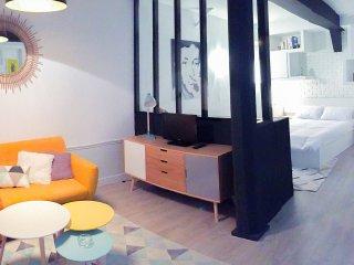 Chatelet Rivoli appartement Paris Central design