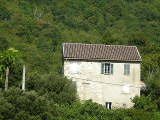 France long term rental in Corsica, Corsica