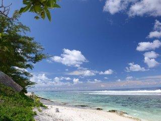 Villa Miki Miki - beachfront property - Moorea, Papetoai