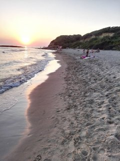 The beautiful beaches along the sea at Anzio are reachable in about 35 minutes