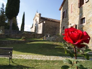 Casa Colonica Toscana - Stone Farmhouse in Tuscany